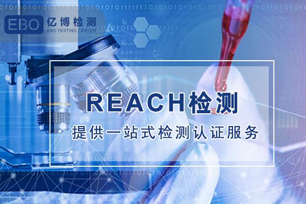 REACH 211项报告修改历程
